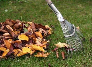 Уборка мусора и листьев с территорий